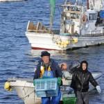 3月26日北海道新幹線開業!青森大間から望む津軽海峡「鈍色冬景色」