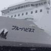 津軽海峡「青森=函館」の新造船「ブルーハピネス」就航!(3月11日)