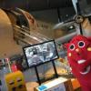"""2017 AOMORI「にゃんごすたー」""""三沢航空科学館""""でガチの記念撮影ポーズ!"""