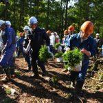 青森県「津軽半島と下北半島」=「青森ヒバの魅力」22世紀への贈り物!